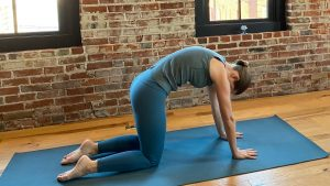yoga for anxiety relief  stacey stufflebeam yoga